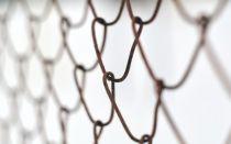 Как правильно построить забор из сварной сетки на даче